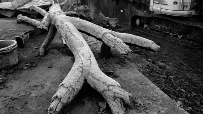 Kunstboomtakken