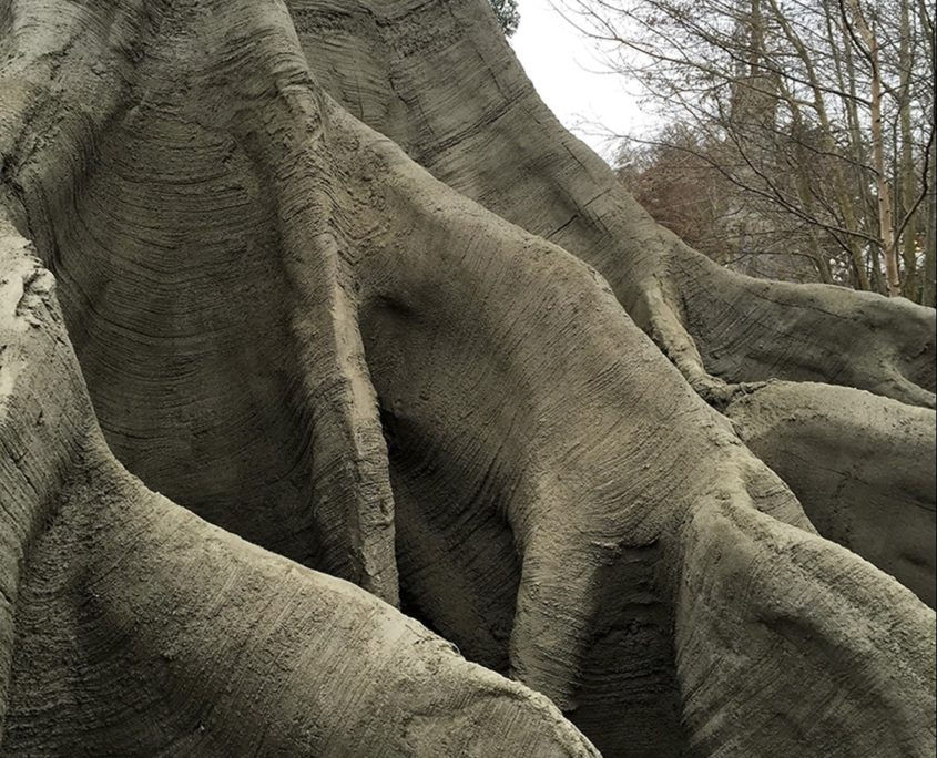 Roots of an artificial tree of concrete