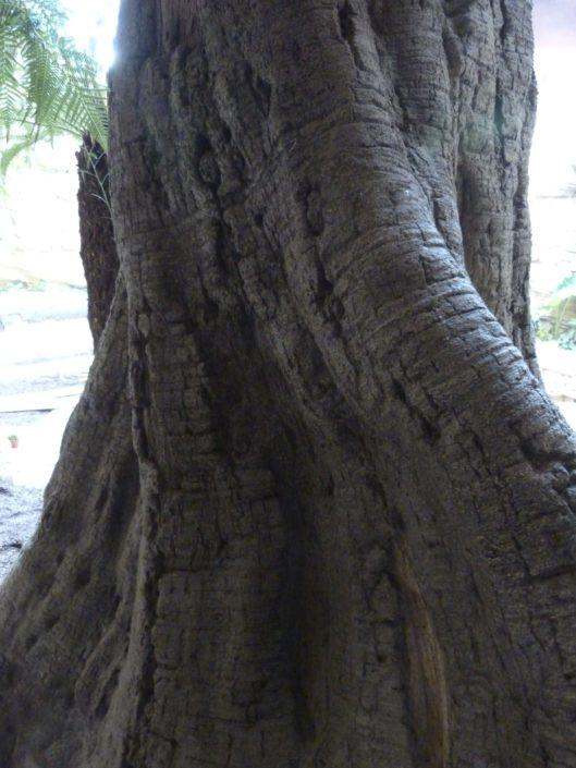 Boomschors kunstboom